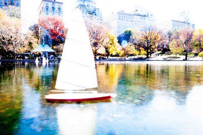 NY Central Park #1 2015