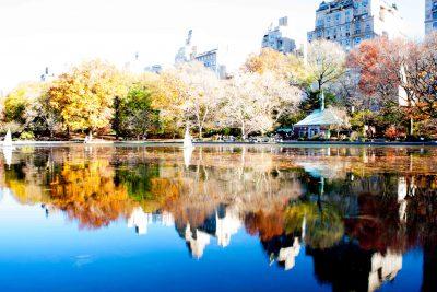 NY Central Park # 2 2015